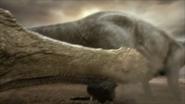 Sarcosuchus-6
