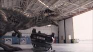 Giganotosaurus-5