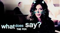 TVD + TO What the fox say ?
