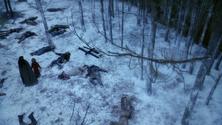 Dahlii robota 2x16