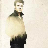 TVD7-Stefan