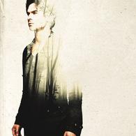 TVD7-Damon