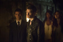 The-Originals-Klaus-Mikaelson-klaus-35627985-800-533