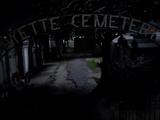 Cmentarz Lafayette