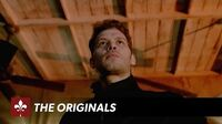 The Originals You Hung The Moon Trailer The CW
