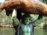 Incredible Hulk: Death in the Family