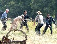 Walking Dead 2x07 001