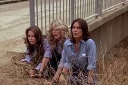 Charlie's Angels 1x04 011