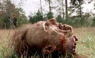 Walking Dead 3x15 002