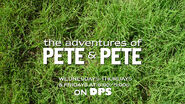 Pete and Pete 2015 DPS Promo