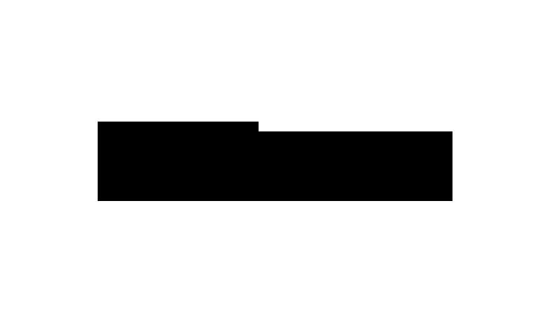 DPS Logo 2008-2013