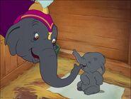 Dumbo 9