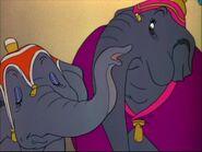 Dumbo 15