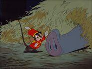 Dumbo 14