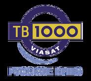 TV 1000 Russkoe Kino gammel