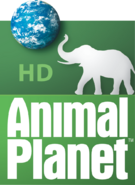 Animal Planet HD gammel