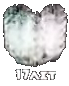 Логотип МУЗ-ТВ к 17-летию (2013)