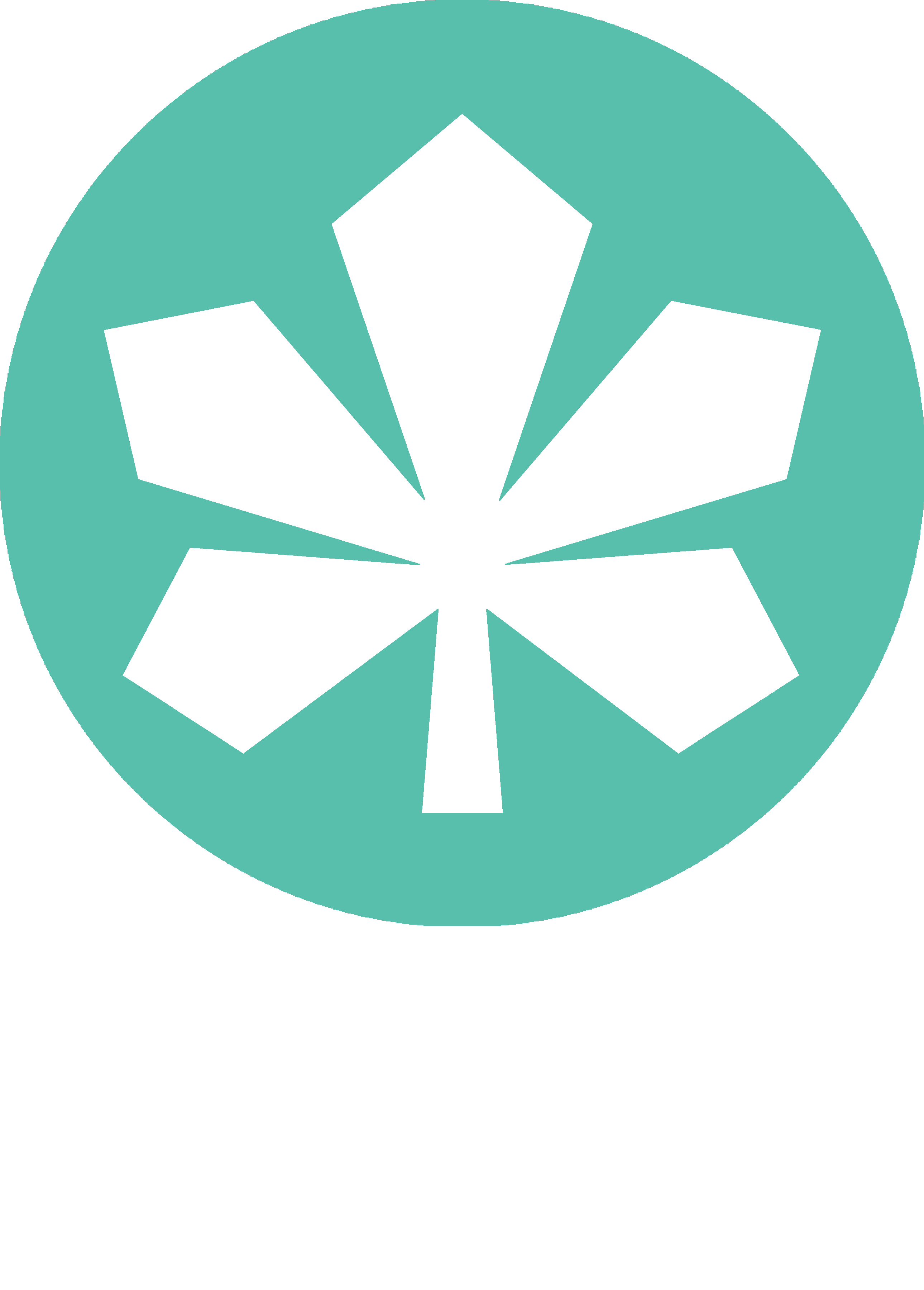 Kyiv TV (2019, green)
