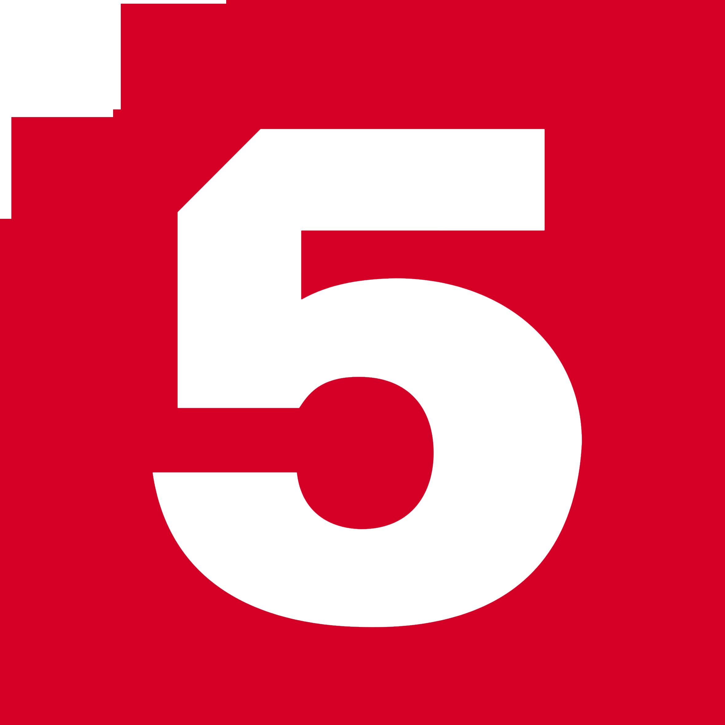 Пятый канал (2008-н.в.) (используется в эфире)