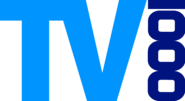 TV1000 (1989)