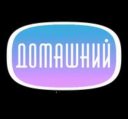 Домашний (2006-2007, новогодний)
