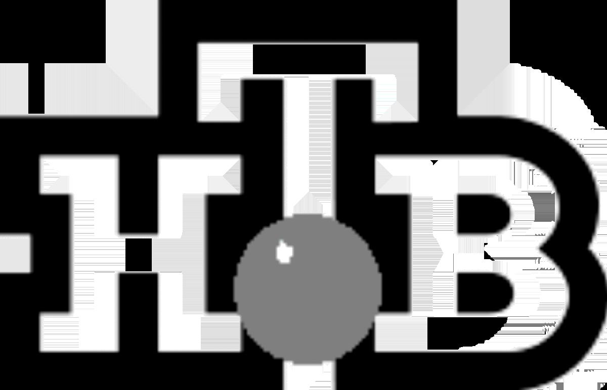 НТВ 3 Серый шарик