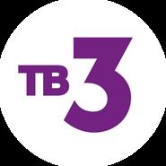 ТВ-3 (2015-н.в.) (используется в эфире)