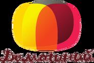 Домашний (2008-2010) (использовался в эфире, коричневая надпись)