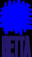 Ветта-Пермь (1991-2008)