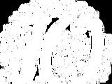 АКАДО (цифровое телевидение)/Список каналов