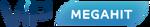 ViP Megahit (2017, эфирный)