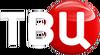 ТВ Центр 5 (без фона, другой шрифт)