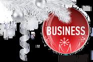 Business TV (Украина) (2013-2014, новогодний)