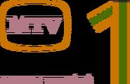 MTV1 1979 цвет