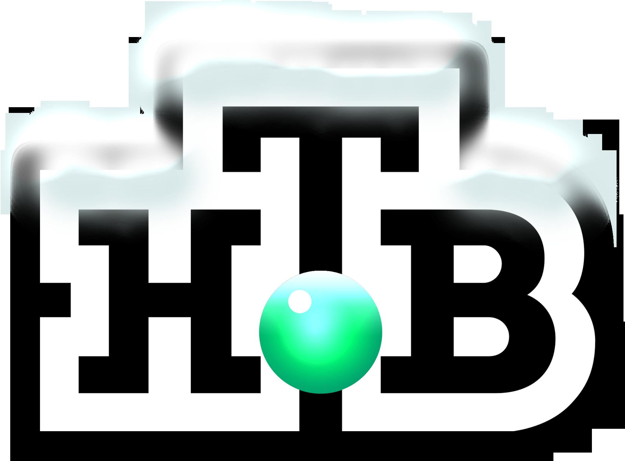 НТВ (2009-2010. новогодний)