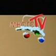 Много TV (2010-2011, новогодний)