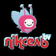 Пиксель TV (другая версия логотипа)