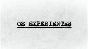 Osexperientes
