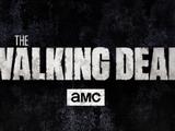The Walking Dead (TV)