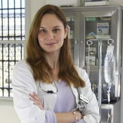 Sarah Wayne Callies como <i>Sara Tancredi</i> em <i>Prison Break</i>.