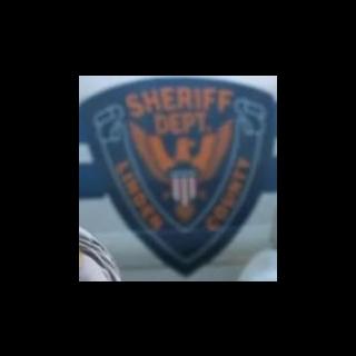 Logotipo do Sheriff no lado de um carro.