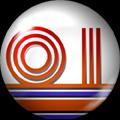 Pin 087