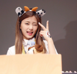 Tzuyu at Signal Fansigns 5