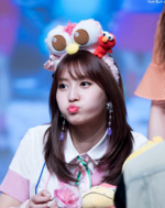 Momo fan meet 170527