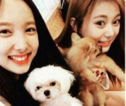 Nayeon and Tzuyu with dogs