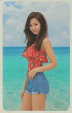 Dance The Night Away Pre-Order Ver. B Tzuyu