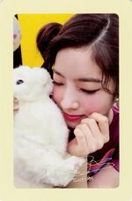 Twicetagram Dahyun Photocard (Pre-Order)