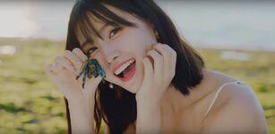 Dance The Night Away MV Screenshot 15