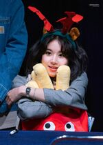 Yes Or Yes Sinchon Fansign Chaeyoung 6