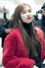 Incheon International Airport Arrival 181103 Mina 4